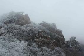덕산·칠갑산·대둔산 도립공원 부분 개방된다